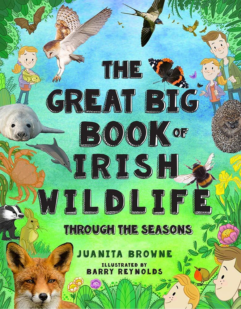 The Great Big Book of Irish Wildlife: Through the Seasons