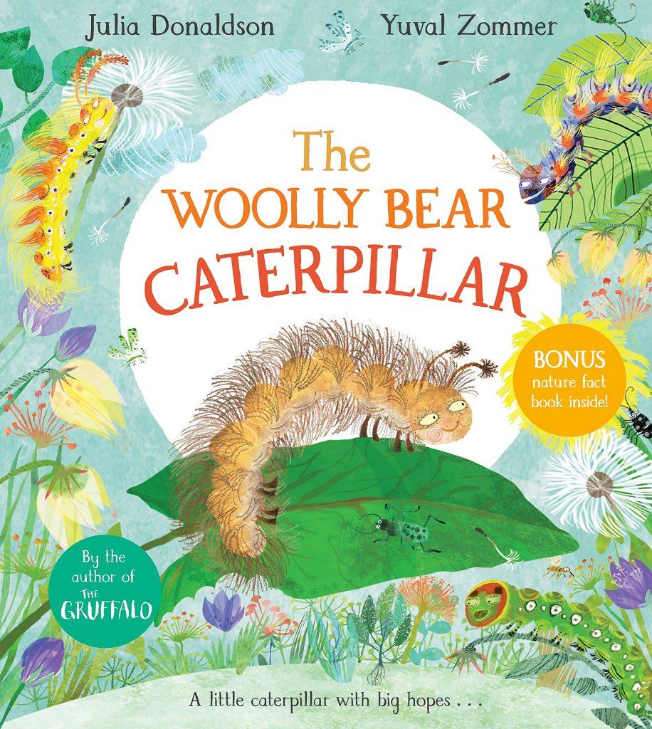 The Wooly Bear Caterpillar